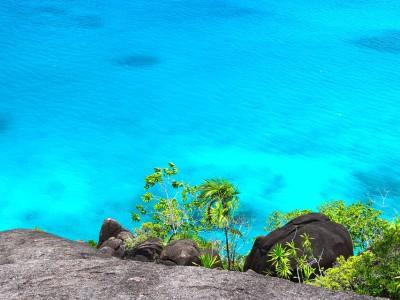 5 raisons de découvrir les Seychelles