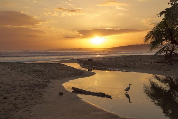 Costa Rica : les incontournables pour un voyage nature et dépaysement